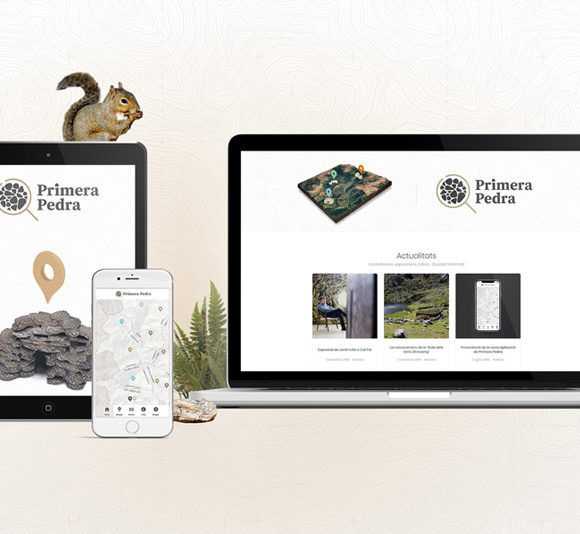 Web & App Primera Pedra