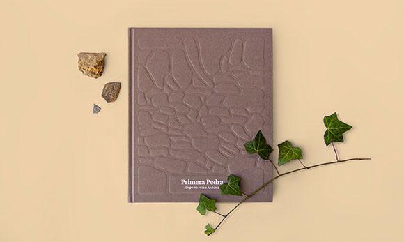 Llibre Primera Pedra